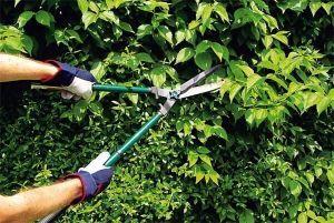 Ножницы для живой изгороди TEFLON волнистые