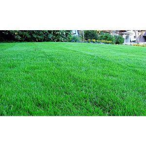 Газонная трава FAIRPLAY 7,5 кг