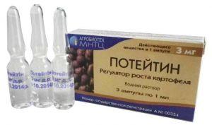 Потейтин
