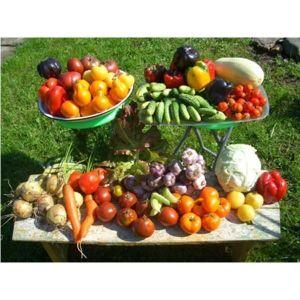 Биопрепарат для овощных культур