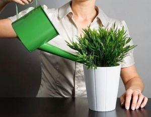 Лейка для комнатных растений Капля