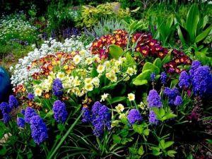 Торфосмесь Зелений Гай, для цветущих растений