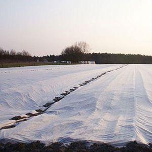 Рулон белого агроволокна 60 г/м.кв, размер 1,6х200м
