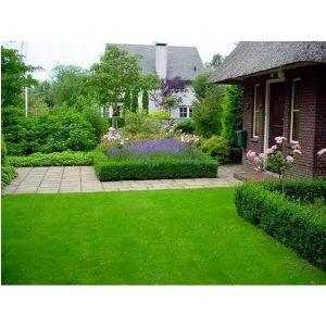 Удобрение для газонов и игровых площадок Агроном Профи