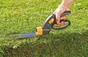 Ножницы садовые для травы