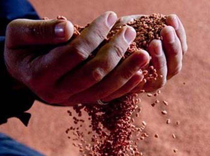 Купить Калийную соль (калий хлористый) Цена, фото ...