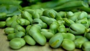 Бобы овощные Бьянко