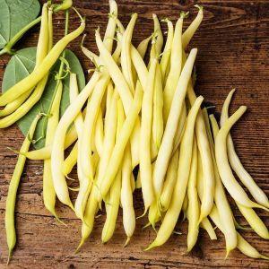 Фасоль овощная спаржевая Лаура