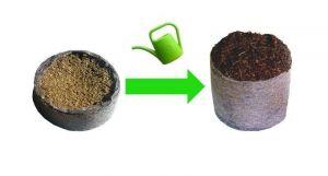 Торфяные таблетки для рассады в сеточке Willy Ø36мм 20 шт