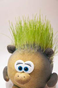 Травянчик Энгри Бердс (Angry Birds)
