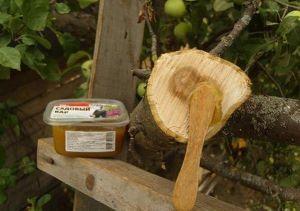 Садовая замазка Благосад 1 кг