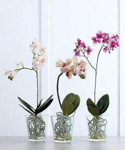 Горшок для орхидей Ø15см 1,5 л (Украина)