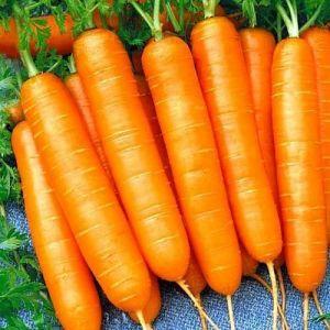 Морковь Нантес тип-топ