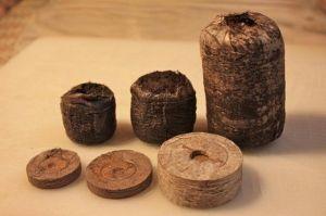 Торфяные таблетки для рассады в сеточке Willy Ø42мм 20 шт