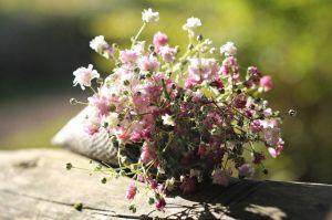 Торфяной субстрат Peatfield для цветущих 10 л