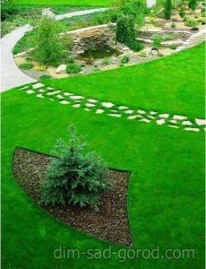 Декоративный газон EURO GRASS