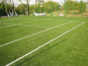 Спортивный газон EURO GRASS 1 кг