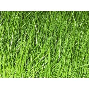 Газонная трава Shadow