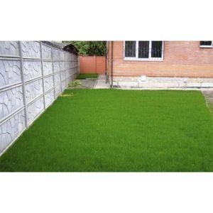 Газонная трава Turbo 1 кг