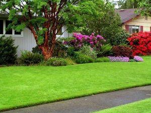 Удобрение для газона круглый год Скоттс Эверис