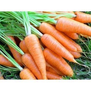 Морковь Карлена, 20 г