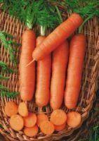 Морковь Голландка 2 гр