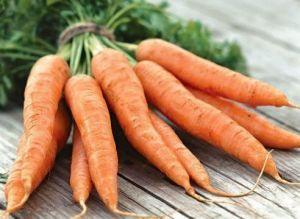 Морковь Ласуня