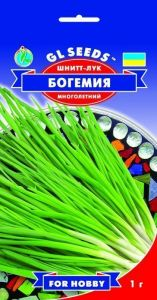 Лук Шнитт Богемия 1 г