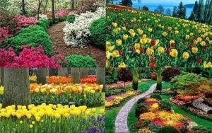 Удобрение Гилея для цветов открытого грунта