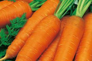 Морковь Витаминная, 20 г