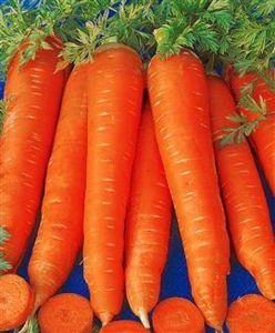 Морковь Московская зимняя, 20 грамм