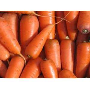Морковь Редко F1