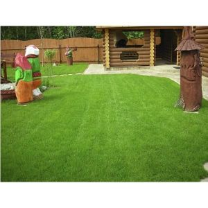 Удобрение Everris All Round для газона