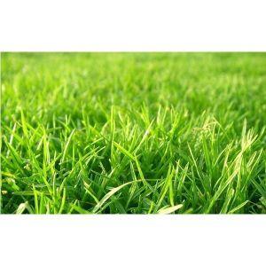 Удобрение для газонов в гранулах