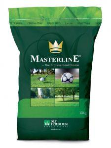 Газонная трава Masterline Expressmaster (Экспрессмастер), 10 кг