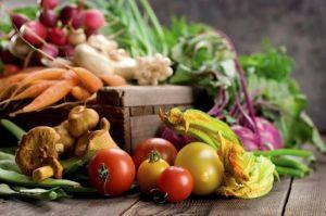 Биопрепарат Джерело для защиты овощей в период хранения