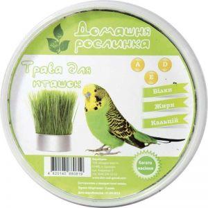 Трава для птиц
