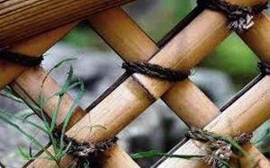 Бамбуковый ствол d 24-26 см