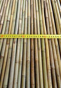 Бамбуковая опора 366 см