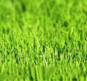 Осеннее удобрение Vila для газонов 12 кг