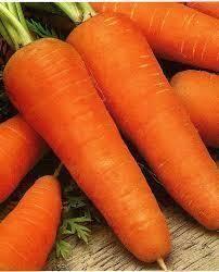 Морковь Роял Шантане, 2 г (эконом-пакет)