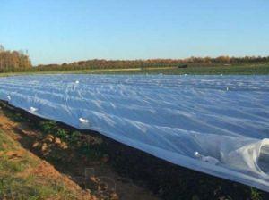Рулон белого агроволокна 60 г/м.кв, размер 3,2х200м