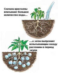 Гидрогель Дім Сад Город плюс 100 г
