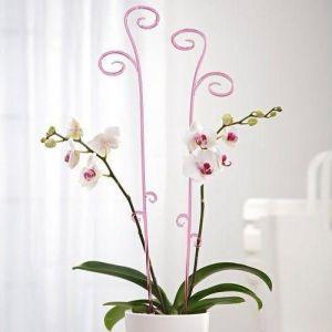 Пластиковая опора Орхидея
