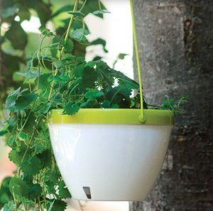 Горшок подвесной Виста (Vista) белый-лайм 3,8 литров