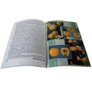 Книга Айва