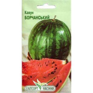 Арбуз Борчанский