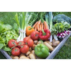 Удобрение Biopon для овощей