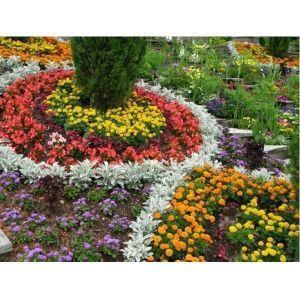 Удобрение Biopon для цветущих растений