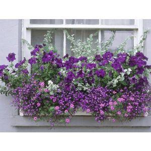 Подставка под Цветы Балкон 50